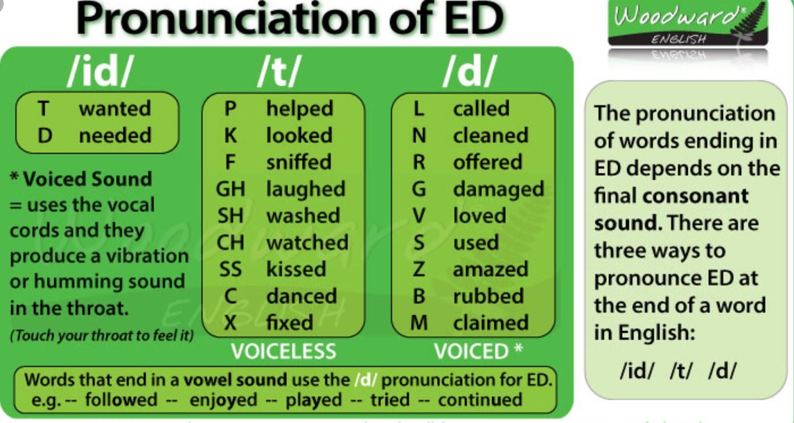 Pronunciation Of Ed Regular Verbs Live Worksheet Mi