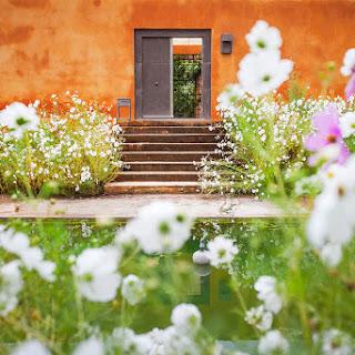 Los jardines de Fernando Carucho en Reflejos del Paraíso