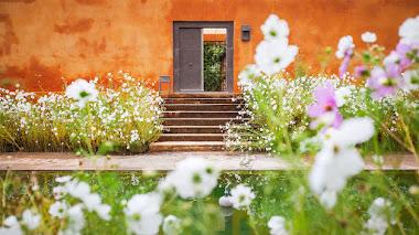 Los jardines de Fernando Caruncho en Reflejos del Paraíso