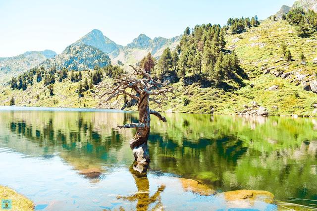 Estany de Baciver en Pirineo catalán