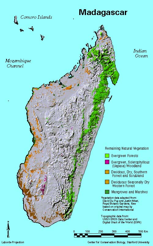 Madagascar Tropical Rainforest Map Of The Study Area