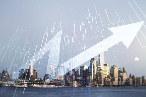 Laman Web untuk Ekonomi Baru