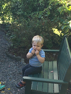 toddler eating on a polywood bench