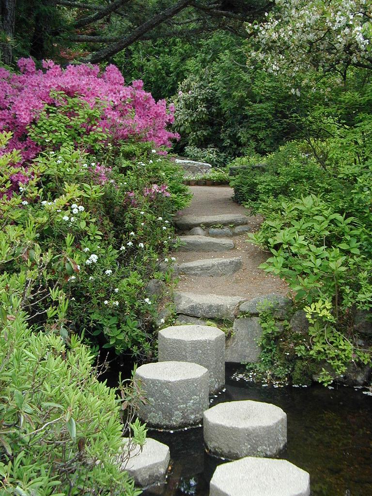 charming zen garden | Japanese Zen Garden: Zen Path