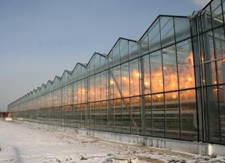 Üveg ház építése
