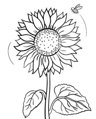 Gambar Sketsa Bunga Matahari dan Lebah