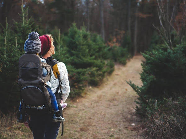 Top 7 Things to Bring on a Day Hike