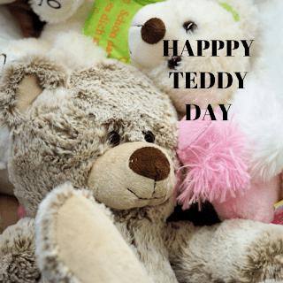 teddy bear images for teddy day
