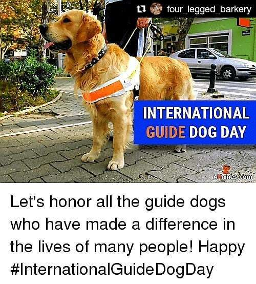 International Guide Dog Day Wishes Sweet Images
