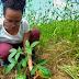 Estudantes pernambucanos criam projeto para reflorestar nascente do Rio Ipojuca