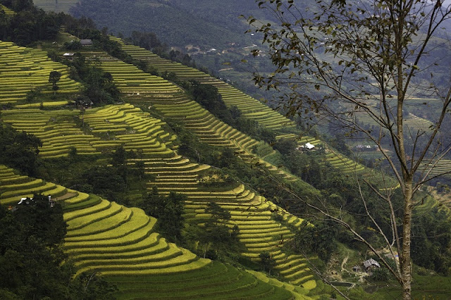 Top Northern Vietnam Tours You Should Explore 2