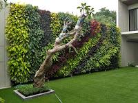 Vertical garden Jakarta - Harga pembuatan taman dinding per meter persegi (m2)