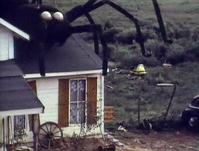 Uno dei famosi ragni giganti
