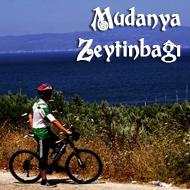 Mudanya Zeytinbağı