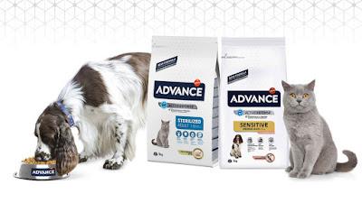 Probar gratis Advance para gatos y perros en Trnd