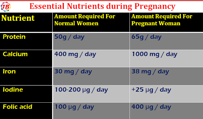 Pregnancy Diet Chart or Diet plan during pregnancy