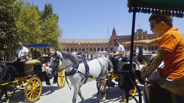 Paseo calesa caballos Sevilla