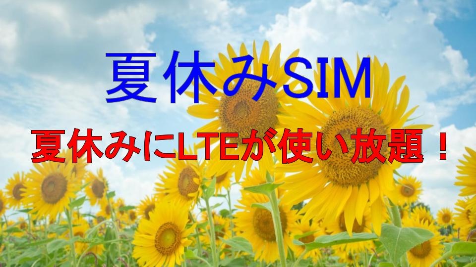 夏休みSIM
