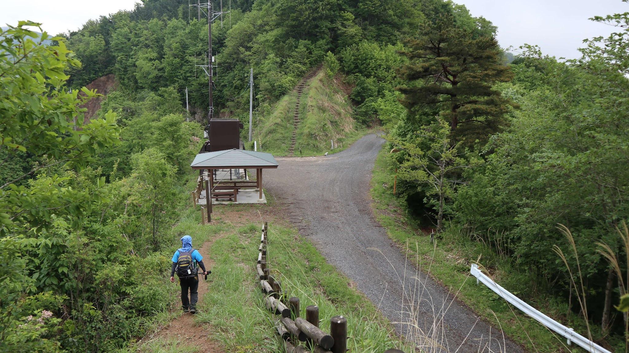 ホノケ山11