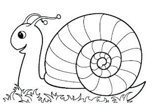 Adorable Snail Coloring Pages Animals
