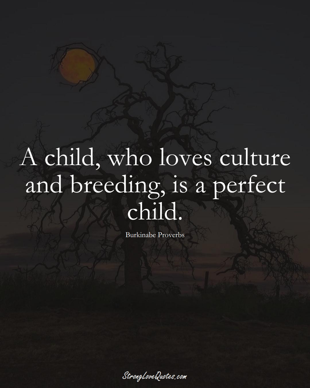 A child, who loves culture and breeding, is a perfect child. (Burkinabe Sayings);  #AfricanSayings