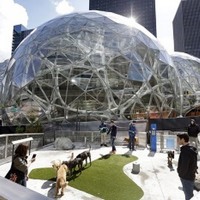 Amazon To Buy Cyprus And Move HQ There…10 Outrageous Predictions For 2021