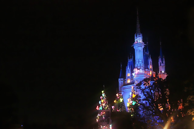 Tokyo Disneyland Sleeping Beauty Castle Night Time Lights