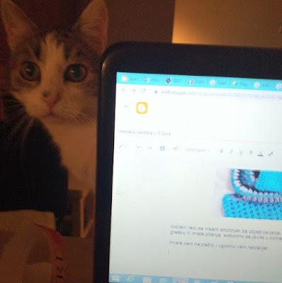 My favorite blogging assistant - Mr. Cat