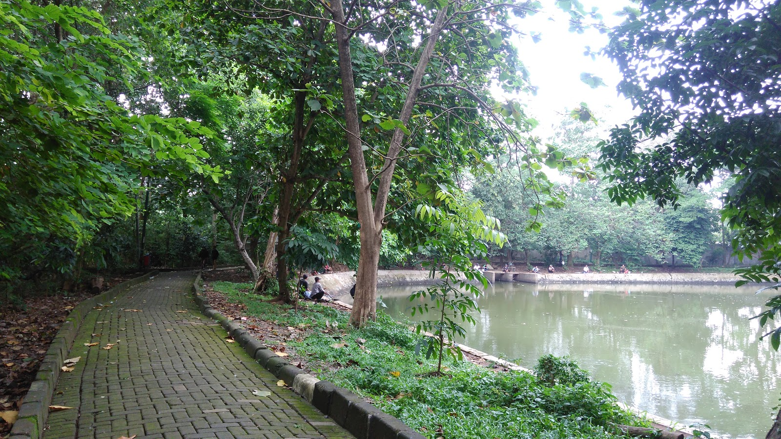 Image result for hutan srengseng