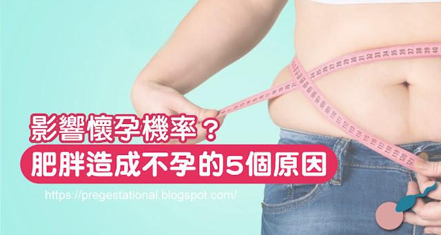 肥胖恐造成不孕?胖多囊應該如何成功受孕?
