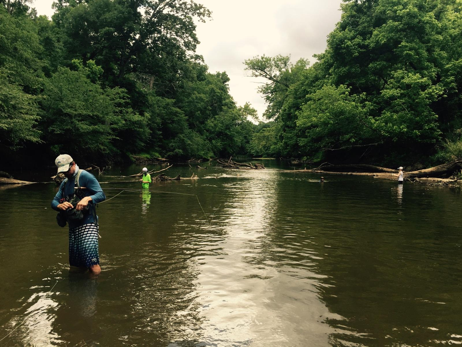 Raleigh flyfishing guide service neuse river wade for Neuse river fishing