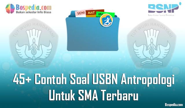 45+ Contoh Soal USBN Antropologi Untuk SMA Terbaru 2019/2020