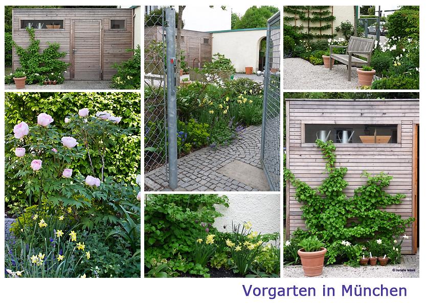 Gartenblog zu gartenplanung gartendesign und - Vorgarten pflegeleicht ...