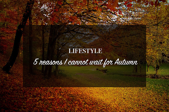 ◈ 5 Reasons I cannot Wait For Autumn