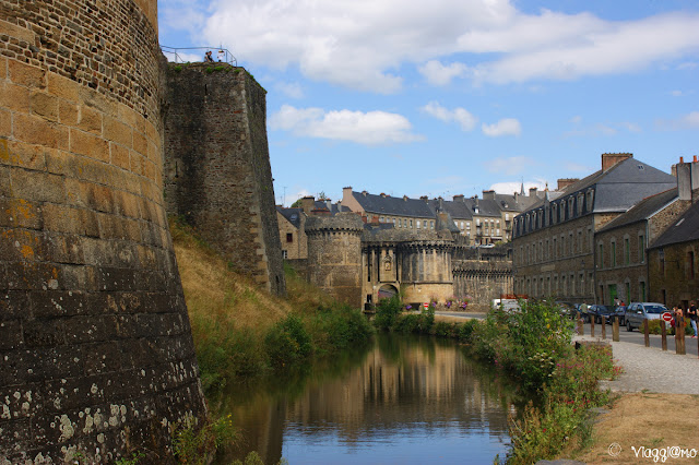 Fougeres in camper
