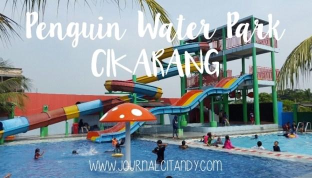 Kolam Renang Penguin Waterpark Cikarang