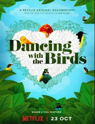 pelicula Bailando con los pájaros