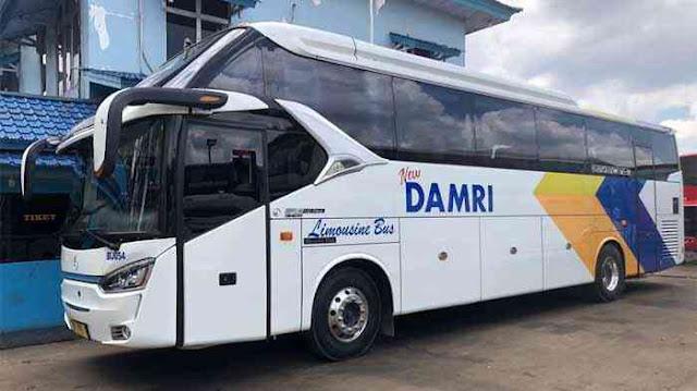 Damri Sintang: Harga Tiket, Jadwal & Nomor Telepon