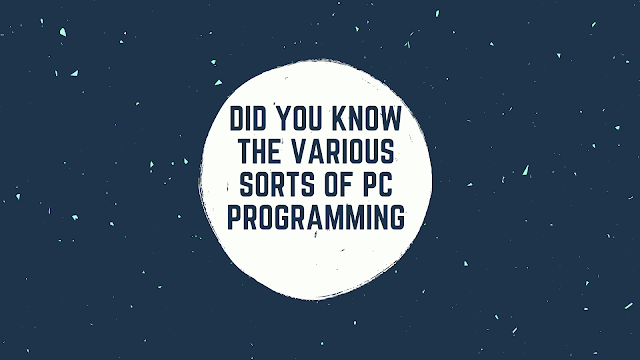 Did You Know the Various Sorts Of PC Programming