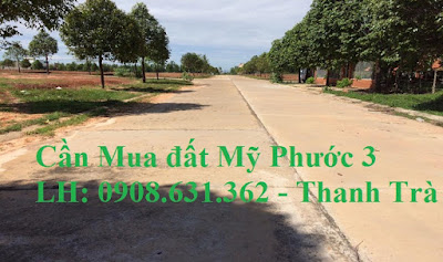 can-mua-lo-i42-my-phuoc-3