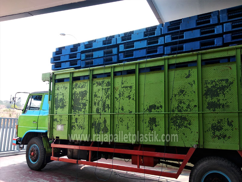 pallet medium duty tiba di rajapallet