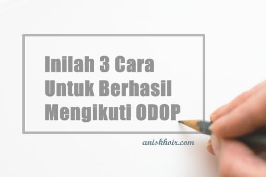 Inilah 3 Cara Agar Berhasil Dalam ODOP