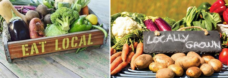 eat local, locally grown vegan food, how to start a vegan business, vegan business ideas, vegan worker coop
