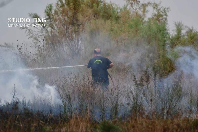 Πυρκαγιά σε αγροτική έκταση στο Μοναστηράκι - Φωτιά και σε αυτοκίνητο