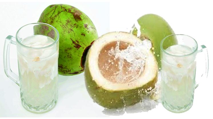 Manfaat Sehat Rutin Minum Air Kelapa Selama 2 Minggu