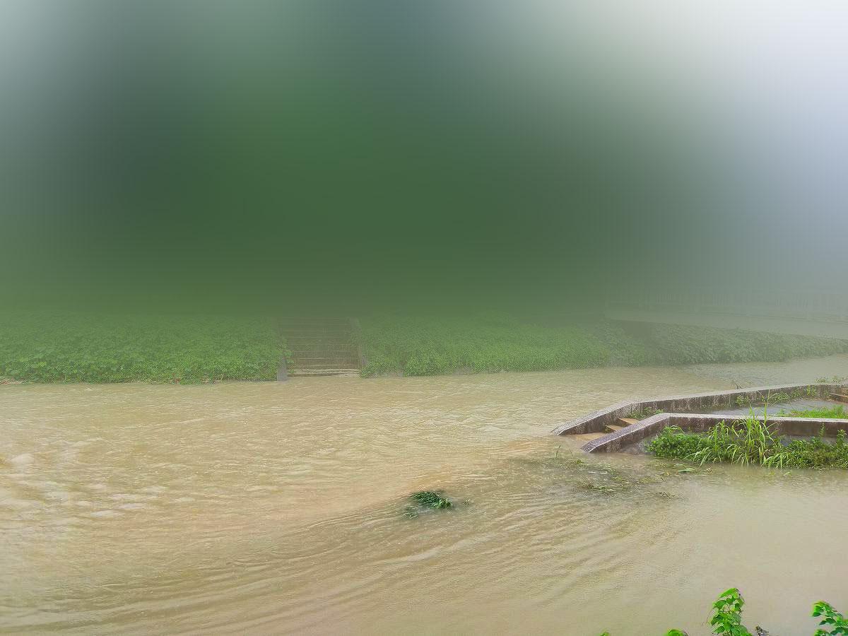 広島市内の氾濫しそうな川。