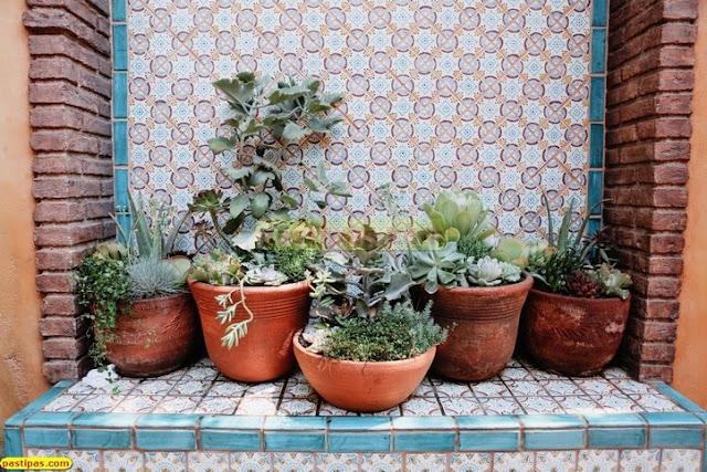 Taman Dalam Rumah Minimalis Konsep Tropis Sejuk