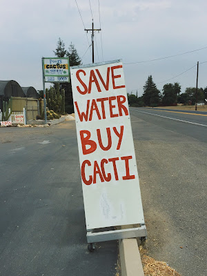 A picture of a sign which reads ' save water buy cacti ' at Poot's Cactus Nursery, Ripon, California