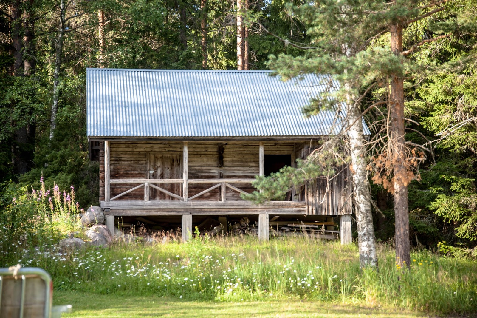 Tampere Kortejärven tila