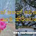 සිත් පහන් වෙන - කතරගම කිරිවෙහෙර ☸️❤️🙏 (Katharagama Kiriwehera)